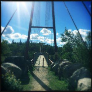 Suspension Bridge - Friday Favorites - PiperCooks