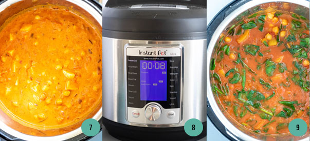 Instant Pot Vegetarian Chickpea Curry Process Shots