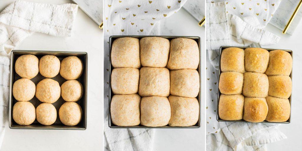 Whole Wheat Dinner Rolls Process Shots